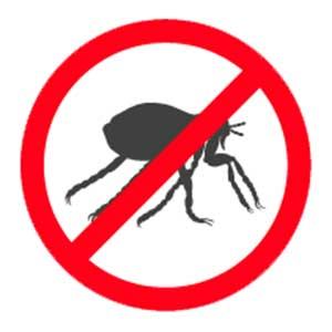 Flea Control Removal Santa Barbara CA