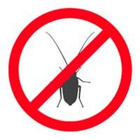 Cockroach Exterminator Santa Barbara CA